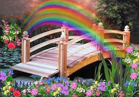rainbow bridge graphic